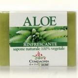 Sapone Aloe